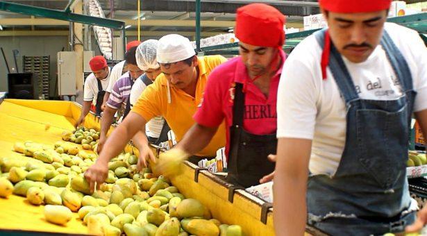 Crece economía en Oaxaca 5.6%: INEGI