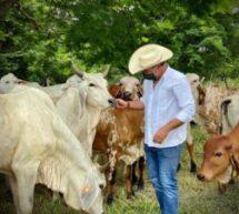 Instalan Comité de movilidad y salud animal en Oaxaca